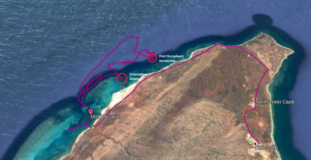 Humpback Whale Swim Map